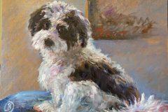 Rossitto_Barbara_ImpressionistPuppy_oil_12x16_700