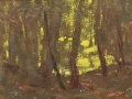 Anisimov Light in the Woods oil