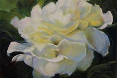 Robertson_Janine_Summer-Rose_oil-on-aluminum_11x13_450