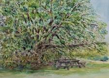 "Christine Anderson, ""Mull Berry"", watercolor, 12x16, $300"