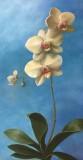 "Patt Baldino, ""Heaven Sent Orchid"", oil, 24x12, $2,800"