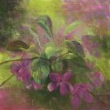 "Linda Gotta, ""Blossoming"", pastel, 14x14, $500"