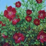 "Melissa Imossi, ""Floating"", oil, 12x12, $550"
