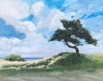 "Pat Kelbaugh, ""Summer Day"", acrylic, 16x20, $550"