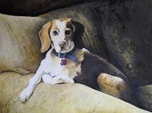 """Lawrence Mello, """"Regal Beagle"""", oil, 18x24, $2,200"""