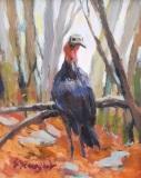 "Sara Drought Nebel, ""Young Turkey"", acrylic, 8x10, $495"