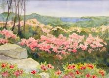 """Anne Pierson, """"Laurel's River View"""", watercolor, 14x17, $450"""