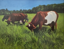 "Erica Schillawski, ""Grazing"", oil, 16 x 20, $800"