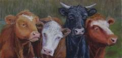 """Patricia Seekamp, """"Plein Air Critics at Tiffany Farm"""", pastel, 13x22, $600"""