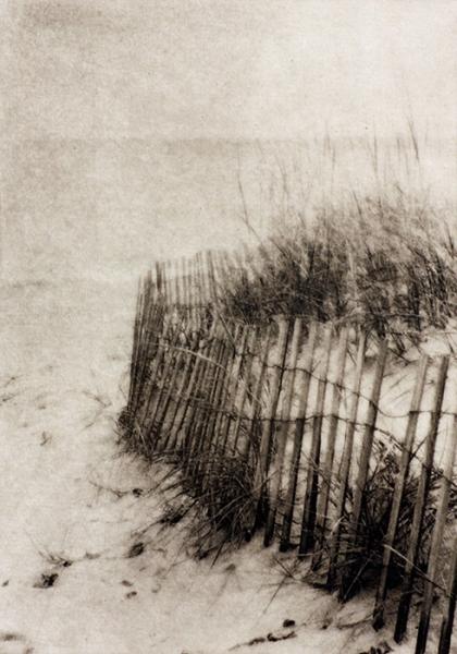Dunn Beach Grasses photopolymer etching