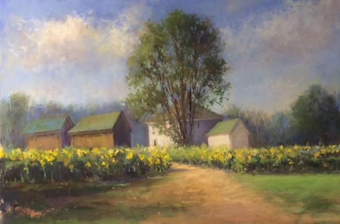 Schireimer Sunkissed Buttonwood Farm pastel