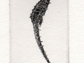 Dunn Seahorse photopolymer etching SOLD