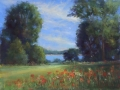 Schireimer Poppies at Fenwick pastel