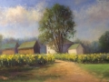 Schireimer Sunkissed Buttonwood Farm pastel