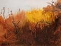 Kaiser Keiko Autumn Gold