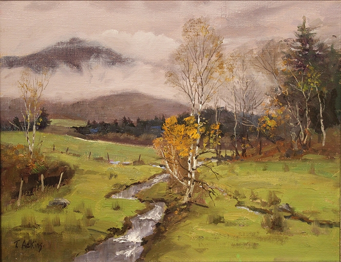 Adkins Thomas Mountain Clouds White Birch