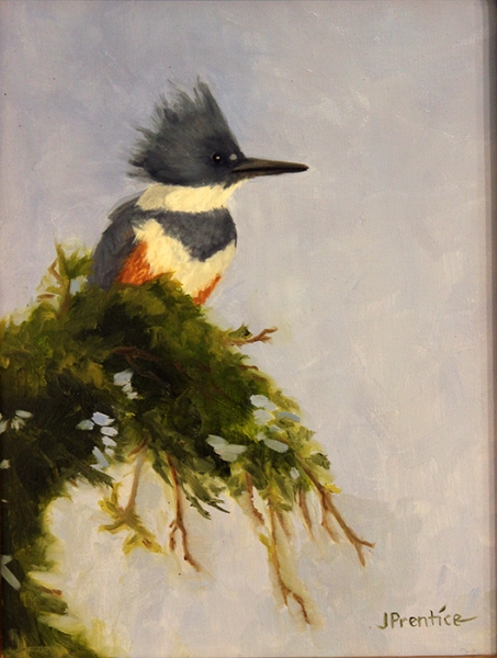 Prentice Jan Belted Kingfisher