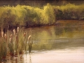 Wells Dinah Cattail Pond