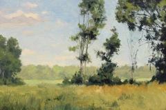 bartlettsummerfieldsoil