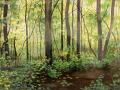 Asher_Gayle_Emerald_Forest