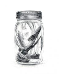 "Amanda Surveski, ""The Lightning Bug"", Graphite, 10x8, $400"