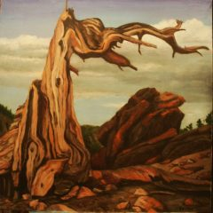 "Wesley M. Vietzke, ""Rocky Mountain Crag"", oil/canvas, 24x24, $650"