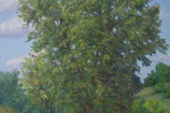 "Mike Berlinski, ""Granby Summer"", Oil, 18x14, $800"