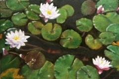 "Phyllis Bevington, ""Lily Pads"", oil, 6x8, $200"