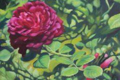 "Melissa Imossi, ""Emerging"", Oil, 14x18, $1,200"