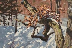"""Jim Laurino, """"Branch over Branch"""", Oil/Canvas, 14x15, $1,300"""