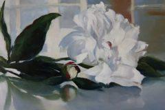"Janine Robertson, ""White Peony"", oil on aluminum, 8x10, $600"