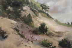 "Lorraine Skelskey Chapin, ""Provincetown Dunes III"", oil, 26x26, $1,500"