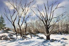 "Lucia Sokol, ""Winter Woodland"", watercolor, 11x14, $400"