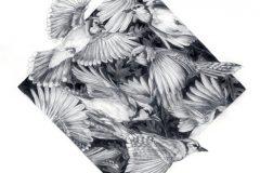 "Amanda Surveski, ""Jay Migration"", Graphite, 26x26, $900"