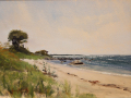 Kennedy James harkness beach