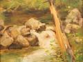 howell Nancy Bauer bog river falls