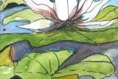 MorganPamelaLotusinBloomwatercolor