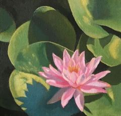 """Diane Chandler, """"Lily Pads"""", oil, 6x6, $160"""