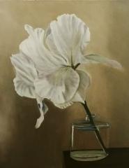 "Daniel Dahlstrom, ""White Flower in Bottle"", oil, 20x16, $825"