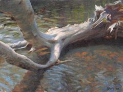 "Sean Murtha, ""Wood and Water"", oil, 8x12, $800"