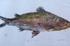 "Carole Erdman, ""Riverfish"", monotype, 12x20, $250"