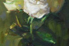 """Ellen Hurley, """"Rose Trio"""", oil on linen, 12x9, $440"""