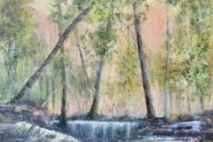 "Deborah Kotchen, ""Rainforest"", oil, 25x25, $750"
