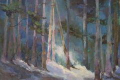 """Susan Shaw, """"Forest Lumen"""", oil, 12x16, $1,400"""