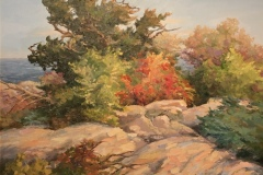 "Linda Sinacola, ""Rockport"", oil, 20x20, $1,200"