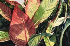 "Cheri Weymann, ""Canna I"", watercolor, 31x25, $1,600"
