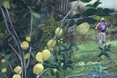 """Michael Mendel, """"Hiking 'Mongst the Lemon Groves"""", watercolor, 27x22, $600"""