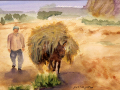 Creighton Patricia C Moroccan Farmer