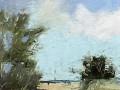 Aleta Gudelski, <i>Approaching Peace, </i>oil, $650