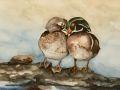 Sharol Stewart, <i>Wood Ducks, </i>watercolor, $395, 22 x 18